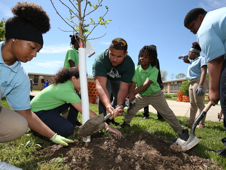 "Bucks and American Transmission Co. Host ""Trees for Threes"" Planting Ceremony"