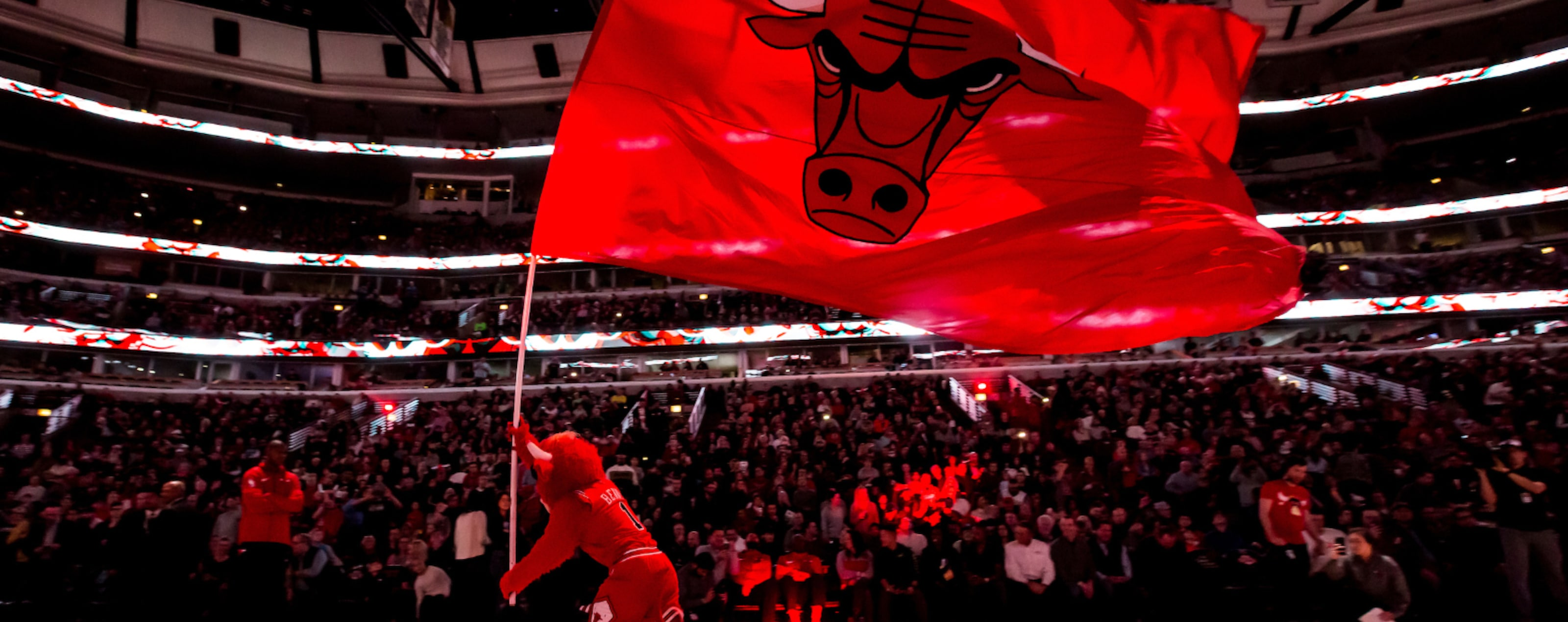 Benny waves the flag during a Bulls game