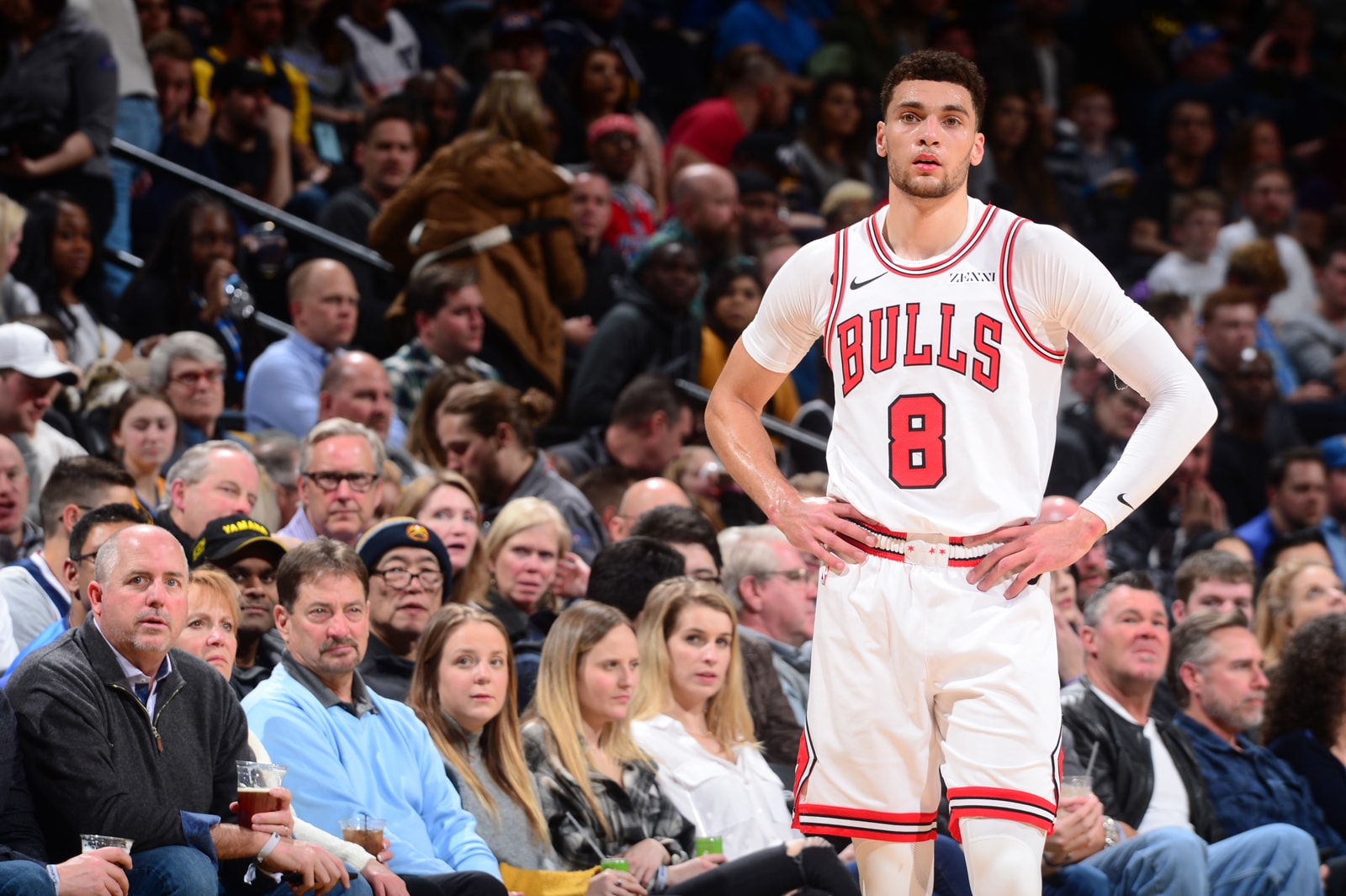 Zach LaVine #8 of the Chicago Bulls looks on during the game against the Denver Nuggets on January 17, 2019 at the Pepsi Center in Denver, Colorado.