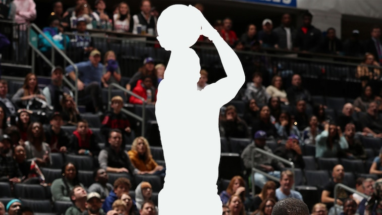 Guess the Bulls Silhouette