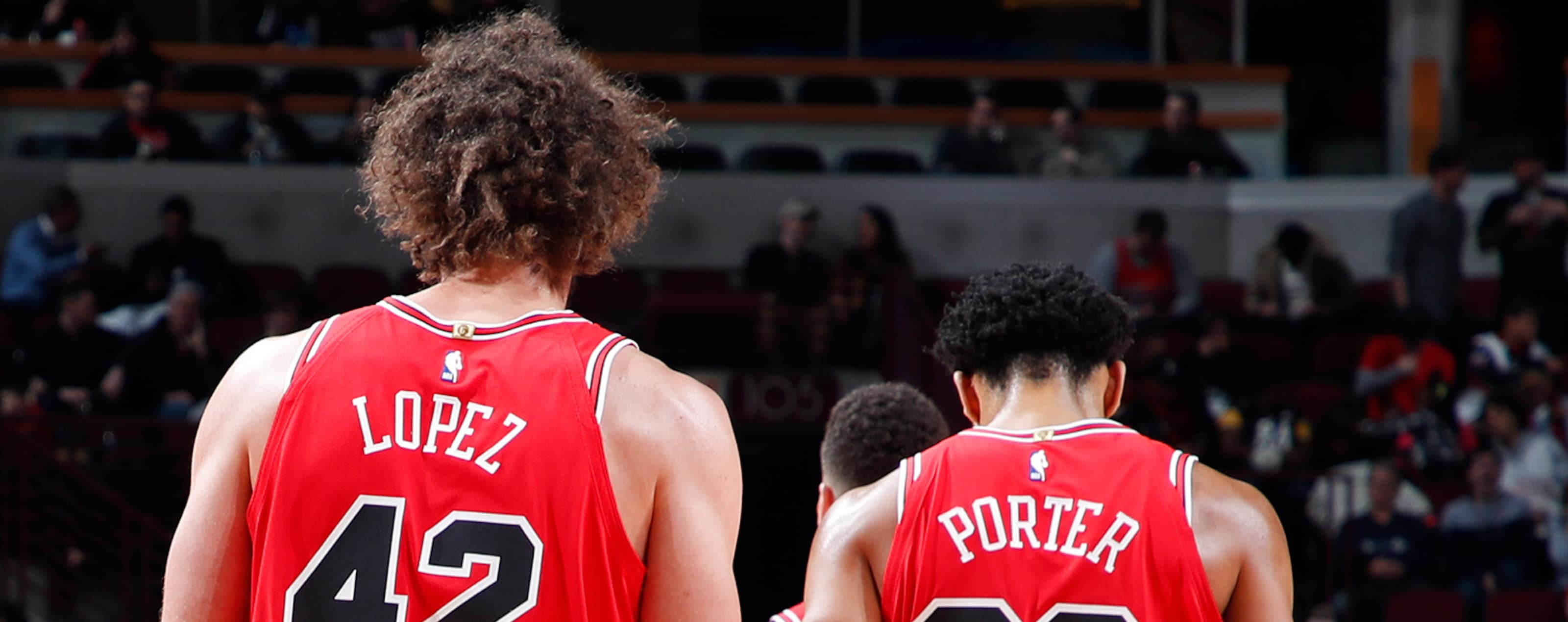 Robin Lopez #42 and Otto Porter Jr. #22 of the Chicago Bulls are seen during the game against the Washington Wizards on February 9, 2019 at United Center in Chicago, Illinois.