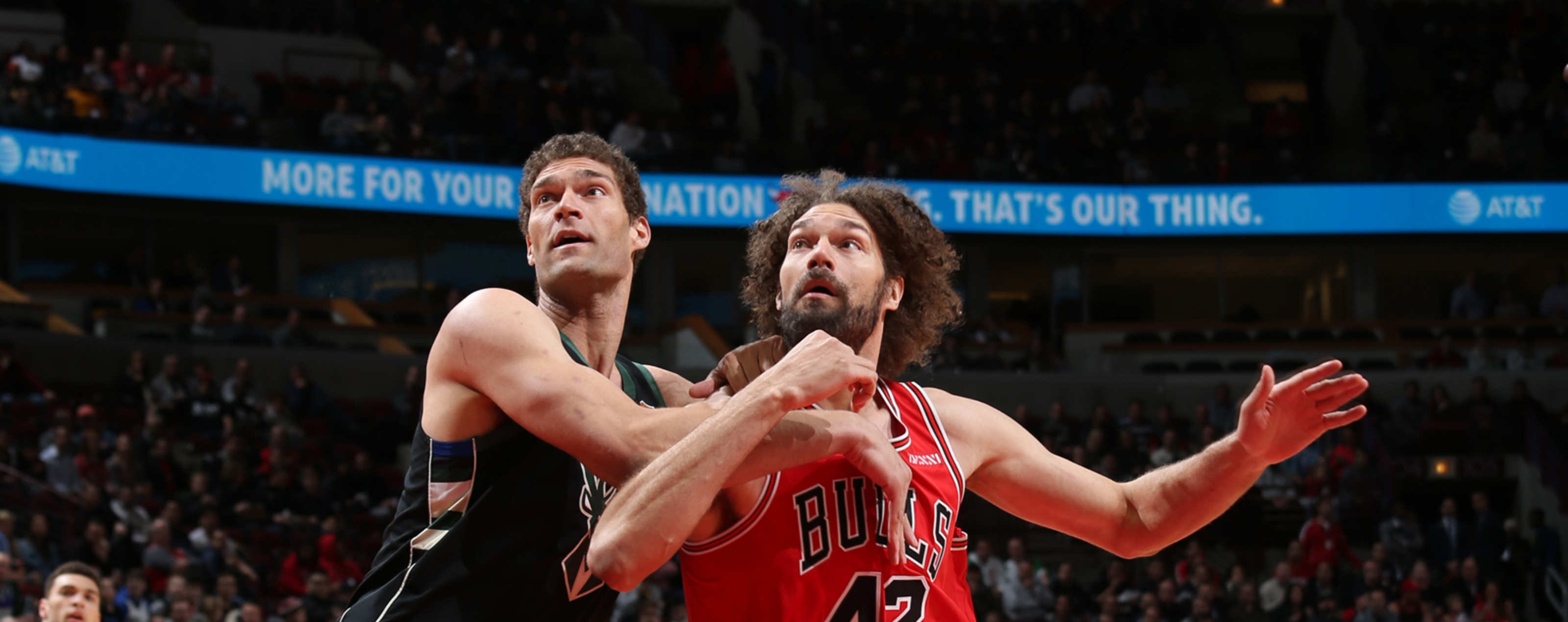 Robin Lopez battles with Brook Lopez for the rebound on February 25, 2019 at the United Center.