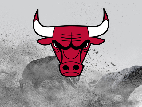 Bulls finalize training camp roster
