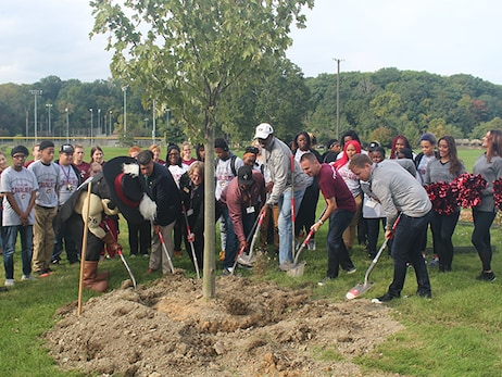 Cavs and PwC Team Up to Plant Trees in Cleveland