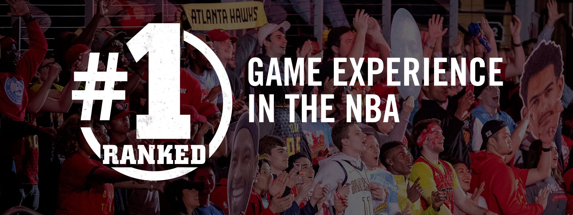 #1 Experience in the NBA