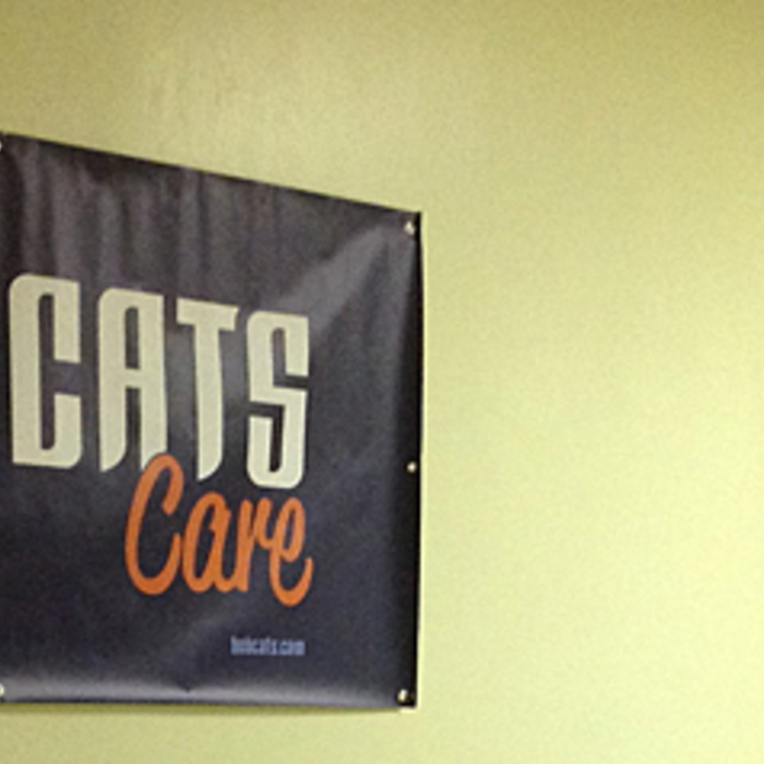 Cats Care Season of Giving Service Day - 11/14/12