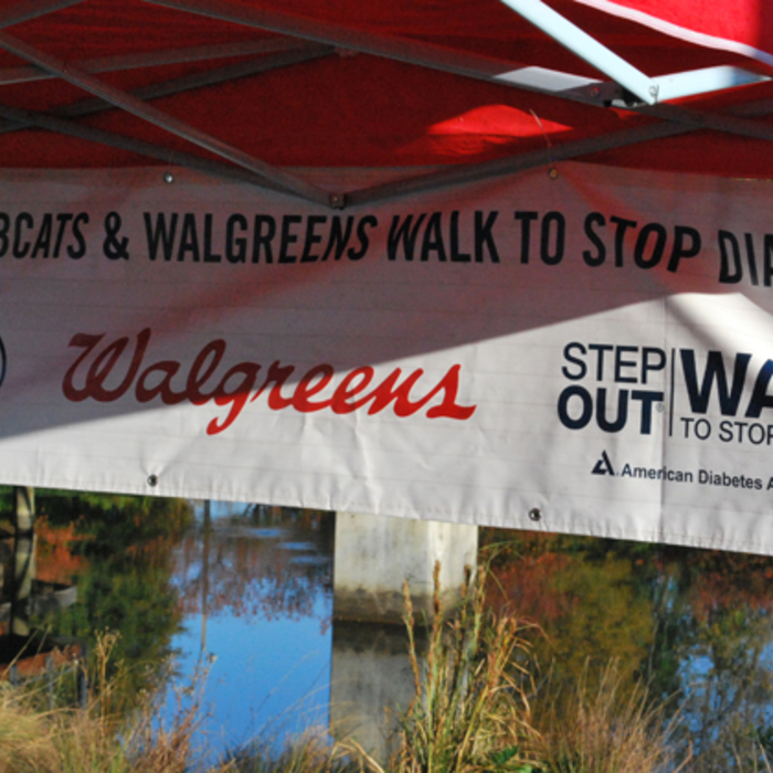 ADA Step Out Walk to Stop Diabetes - 11/2/13