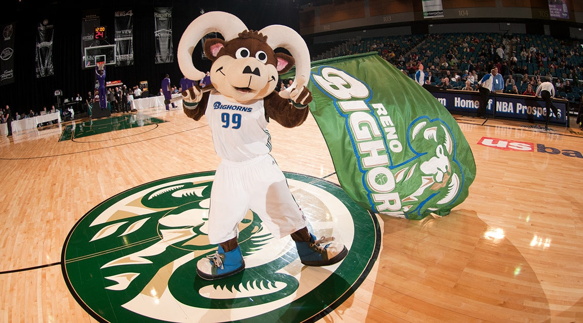One-on-One with Scott Schroeder: Bighorns Assistant Coach and Director of Player Personnel