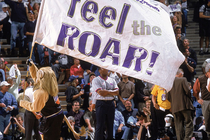 Gallery: Loudest Playoff Arenas Through the Years