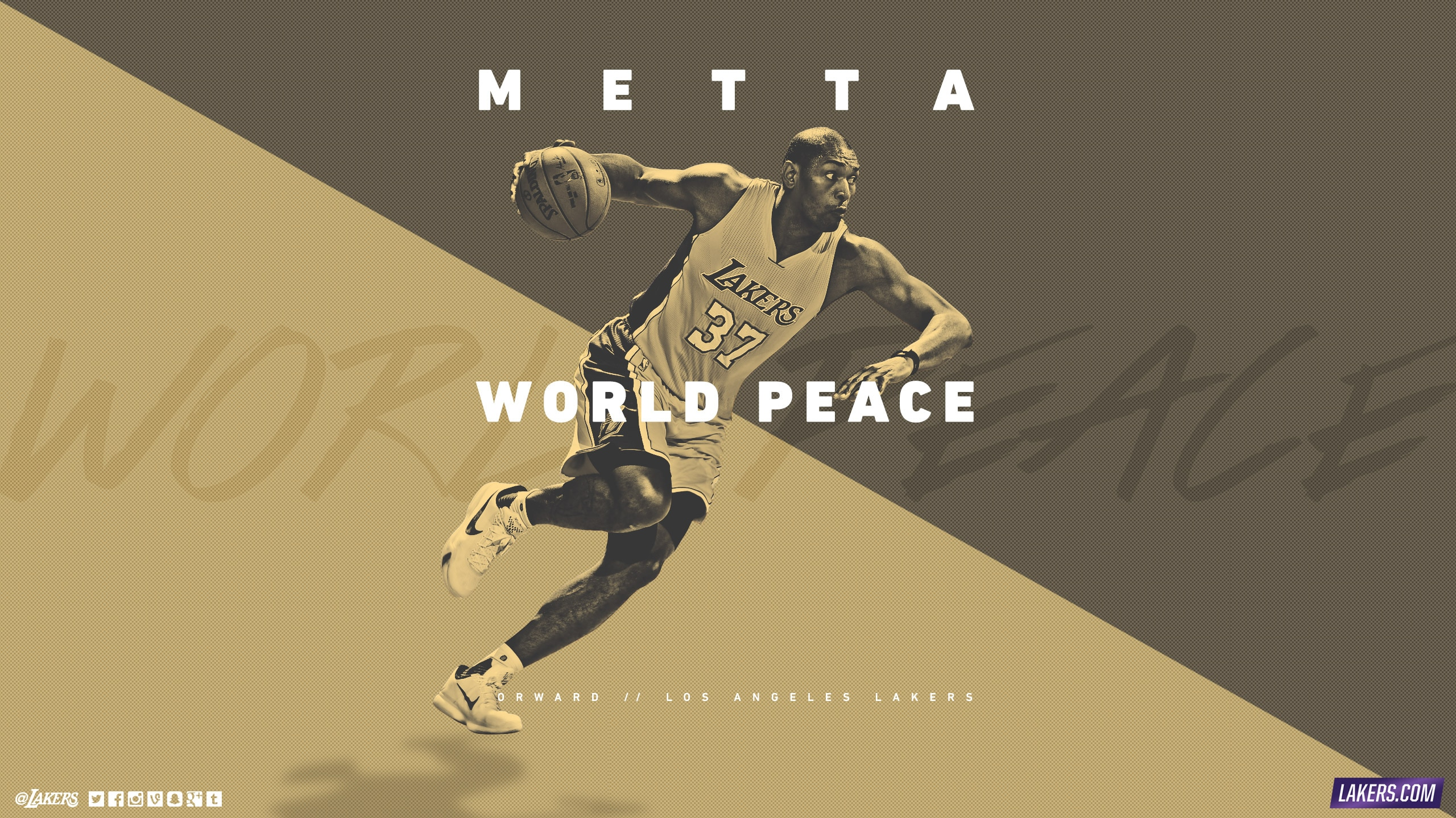Metta World Peace Player Wallpaper