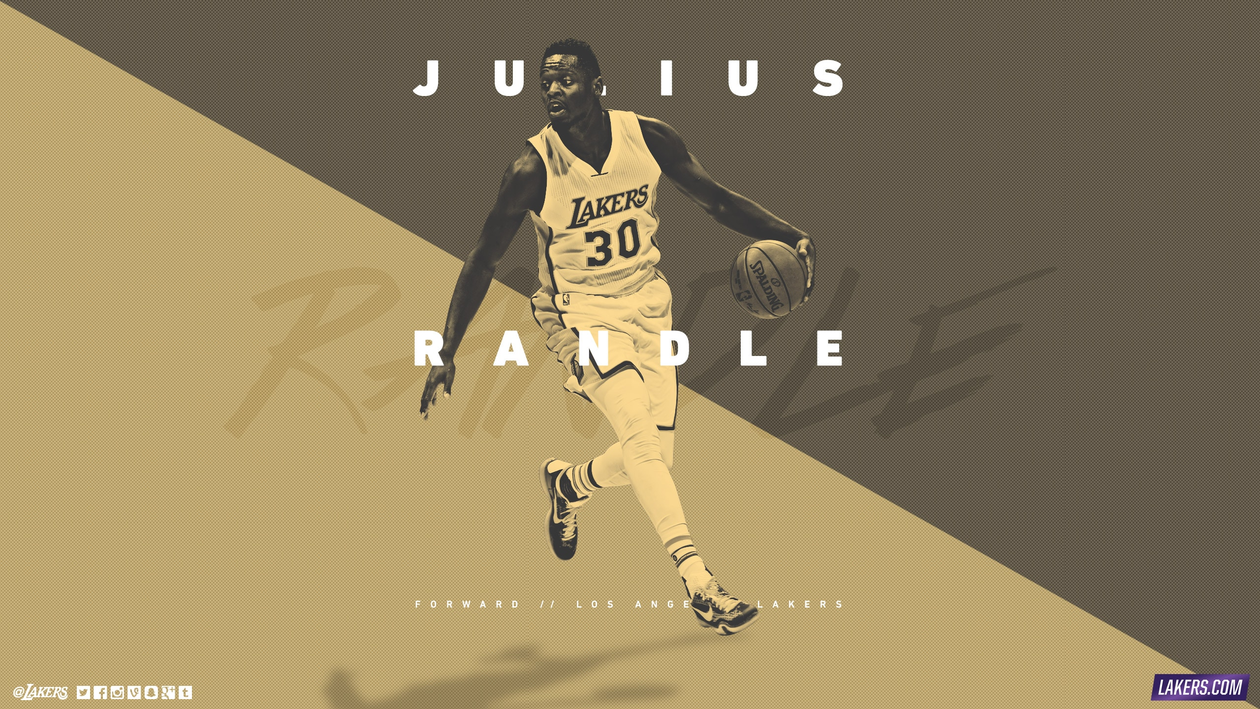 Julius Randle Player Wallpaper