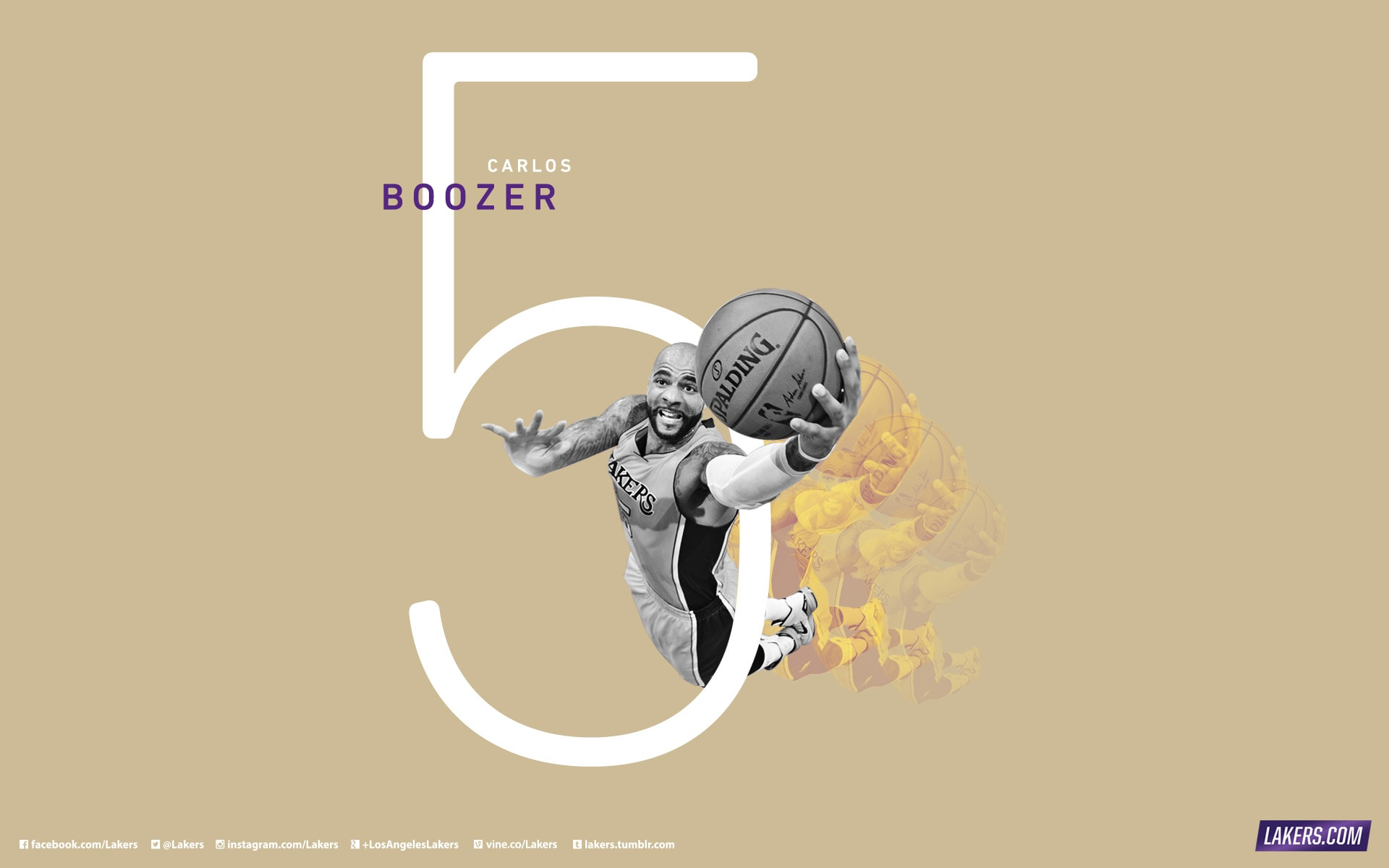 Carlos Boozer Player Wallpaper