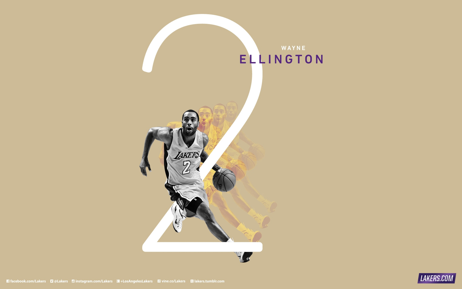 Wayne Ellington Player Wallpaper