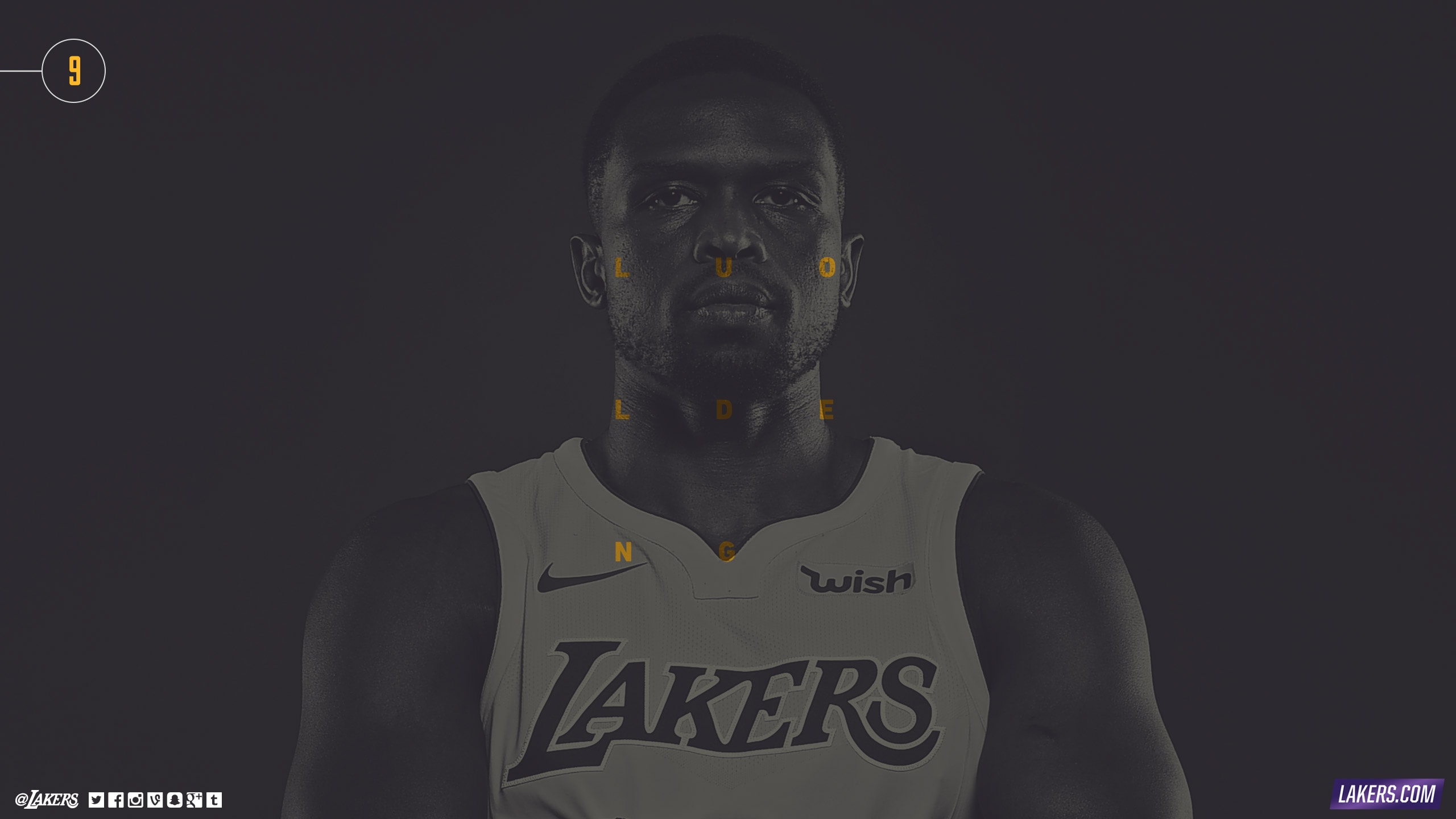Luol Deng Player Wallpaper