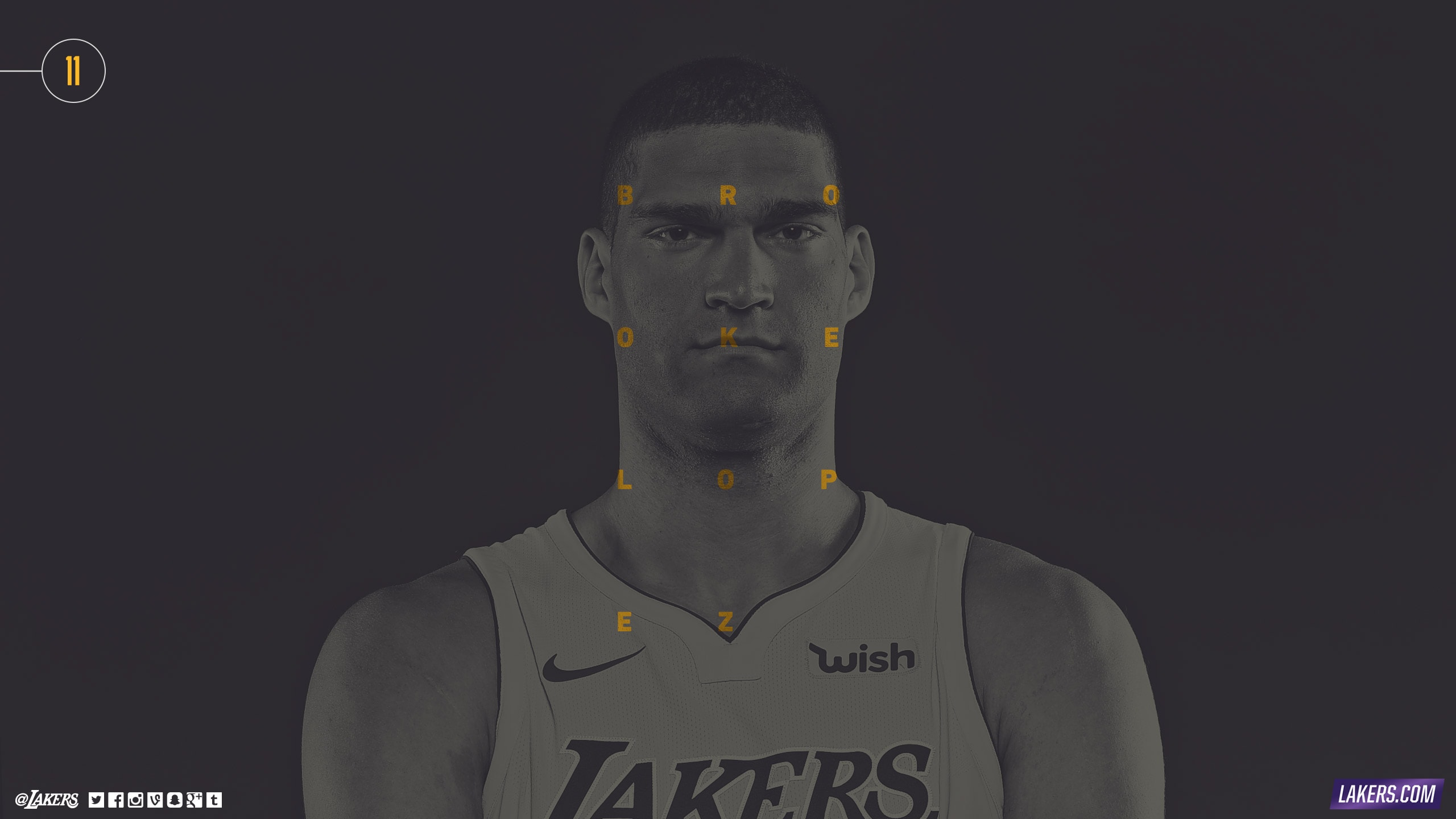 Brook Lopez Player Wallpaper