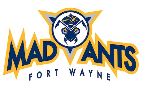 2018-19 Mad Ants Transactions