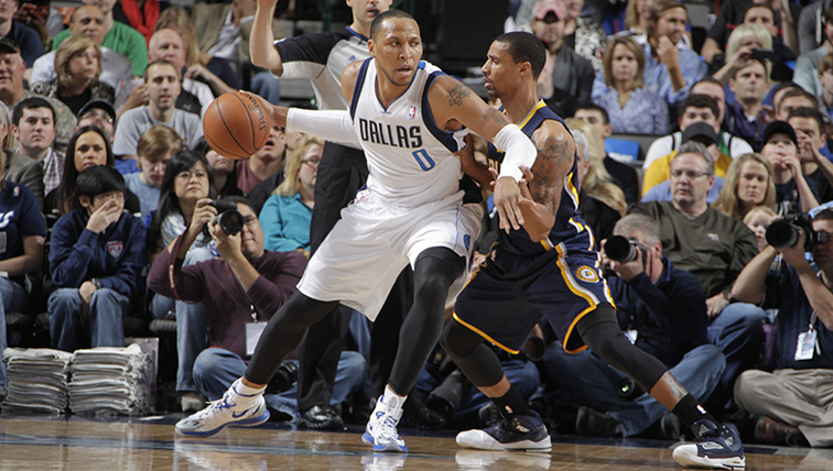 Shawn Marion, George Hill