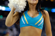 2008-09 Honeybees Action Gallery 1 - Photo Gallery