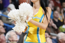 2008-09 Honeybees Action Gallery 3 - Photo Gallery