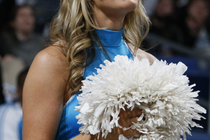 2008-09 Honeybees Action Gallery 4 - Photo Gallery
