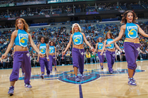 Honeybees in Action: Gallery #3
