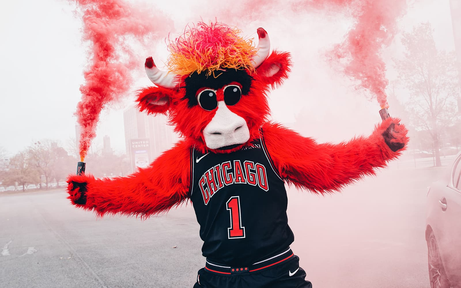 benny the bull at a press conference