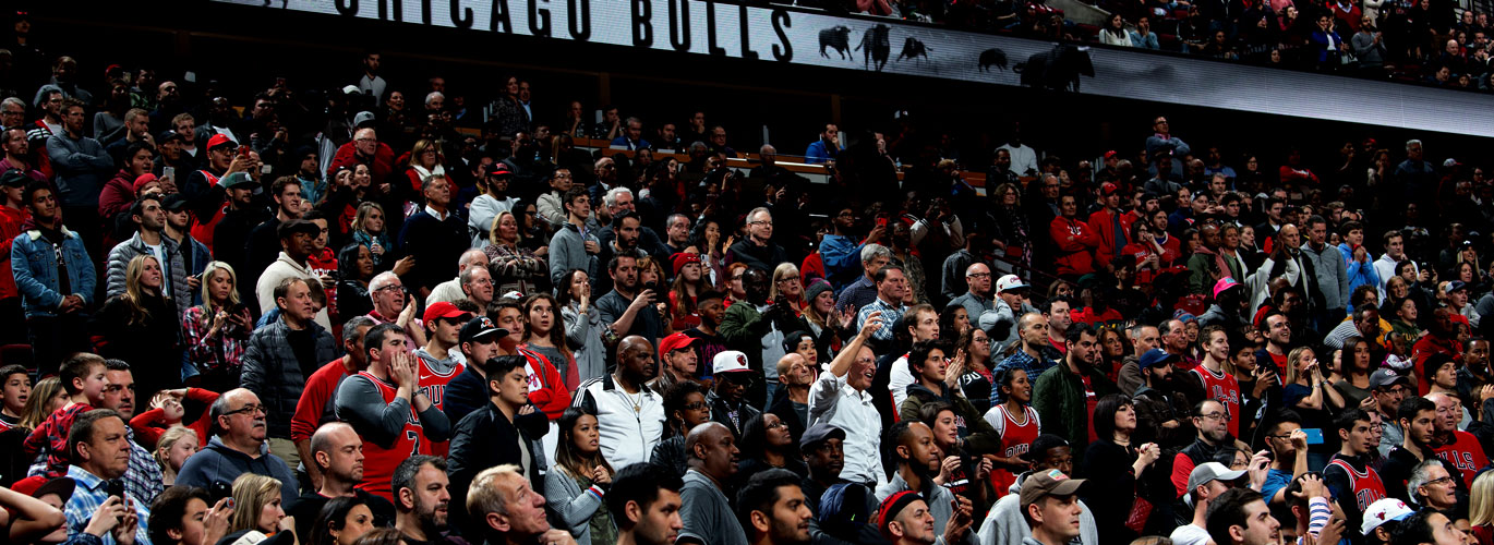 Fans at a Bulls game.