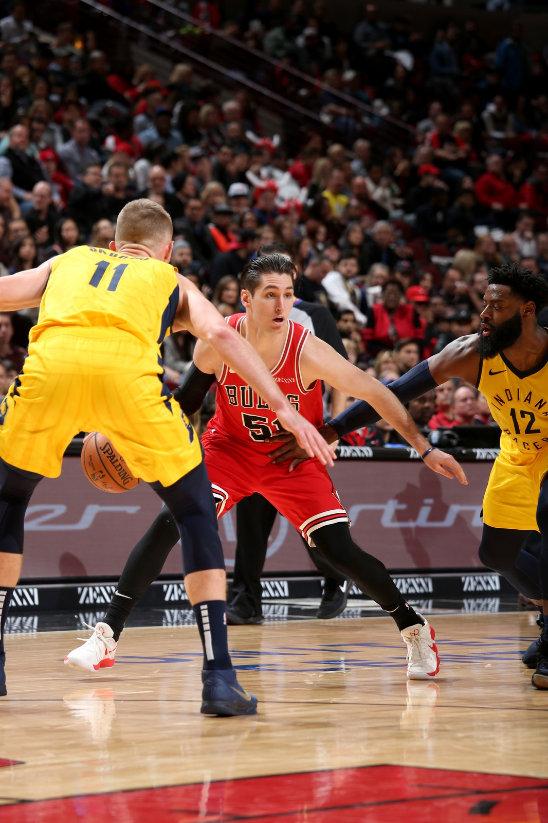 Ryan Arcidiacono #51 of the Chicago Bulls handles the ball against the Indiana Pacers on November 2, 2018 at the United Center in Chicago, Illinois.