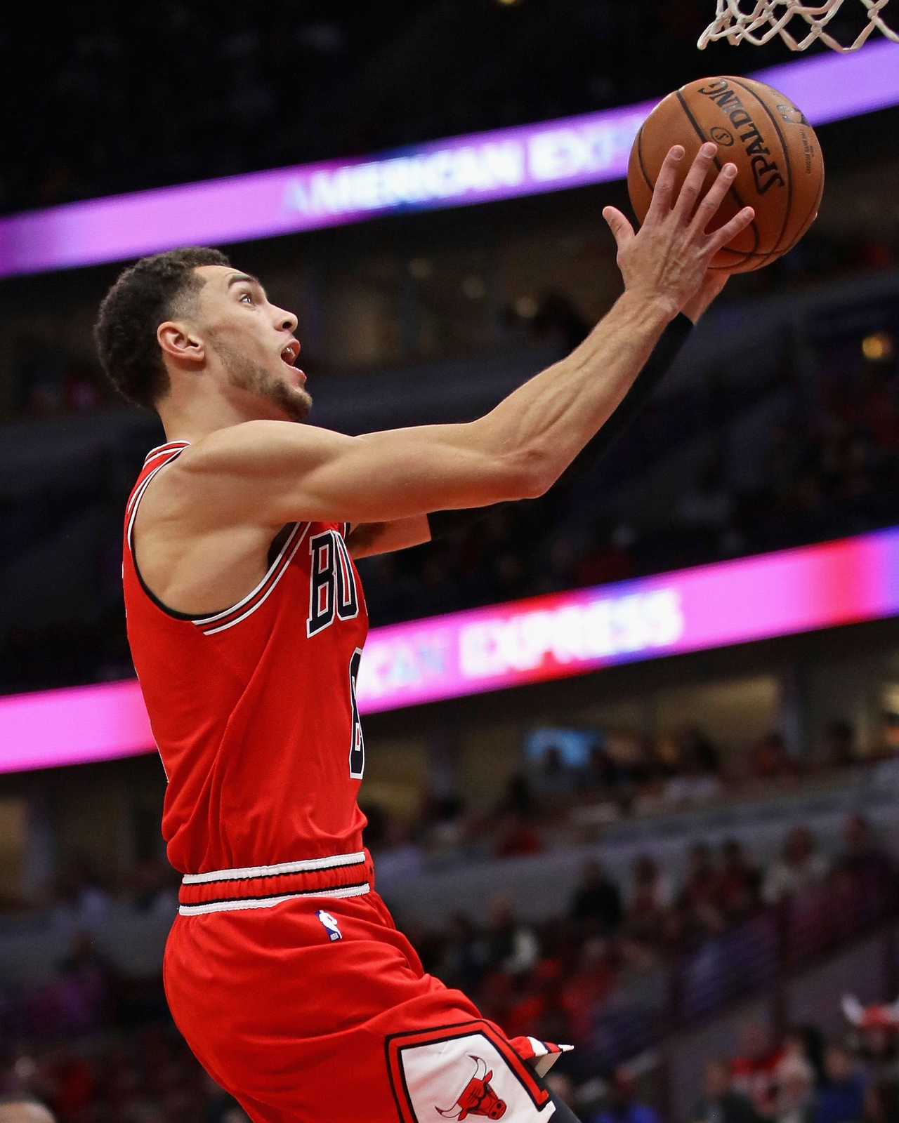 Zach LaVine #8 of the Chicago Bulls drives to the basket on his way to a game high 32 points against the Charlotte Hornets at the United Center on October 24, 2018 in Chicago, Illinois.