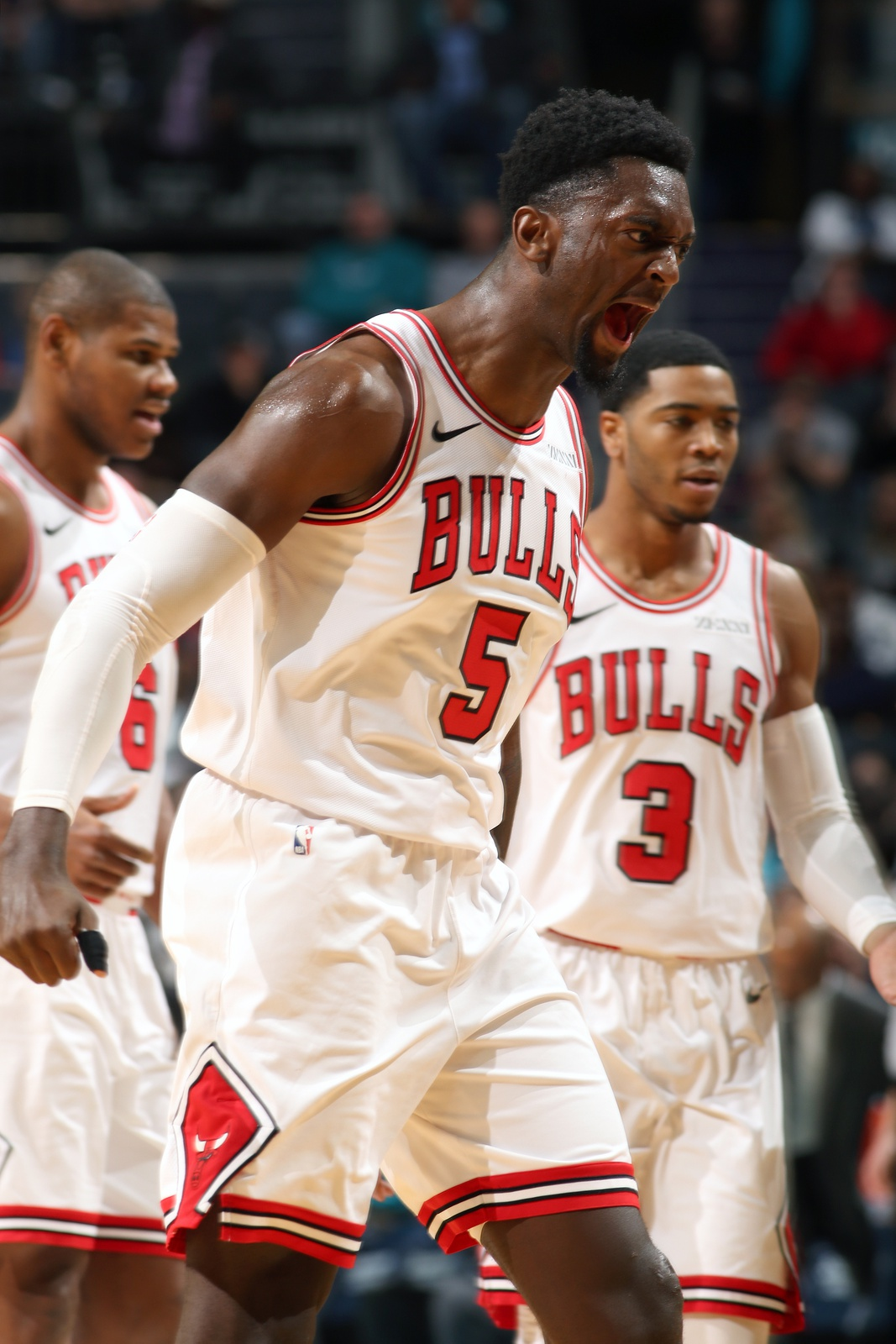 Bobby Portis #5 of the Chicago Bulls reacts to a play during the game against the Charlotte Hornets on February 2, 2019 at the Spectrum Center in Charlotte, North Carolina.