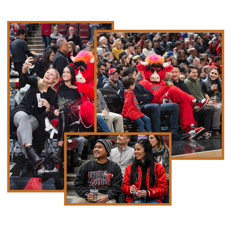 Photo montage of Bulls courtside experiences