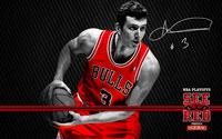 2012 Playoffs: Omer Asik Wallpaper