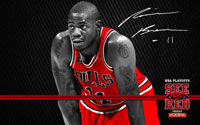 2012 Playoffs: Ronnie Brewer Wallpaper