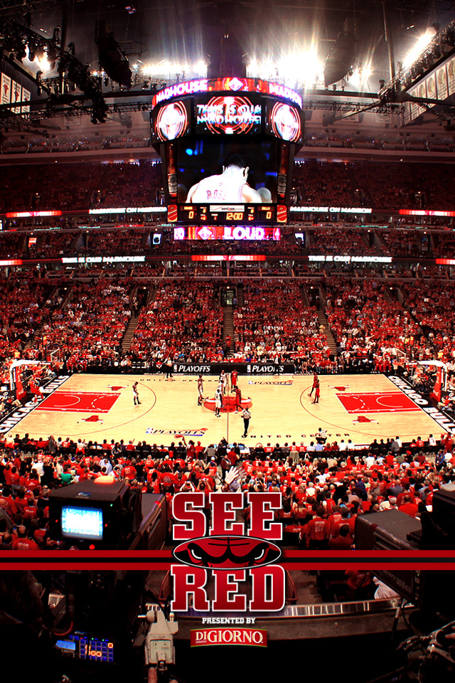 2012 playoffs see red wallpaper chicago bulls iphone voltagebd Images