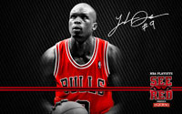 2012 Playoffs: Luol Deng Wallpaper
