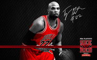2012 Playoffs: Taj Gibson Wallpaper