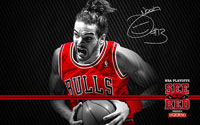 2012 Playoffs: Joakim Noah Wallpaper
