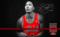 2012 Playoffs: Derrick Rose Wallpaper