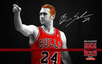 2012 Playoffs: Brian Scalabrine Wallpaper