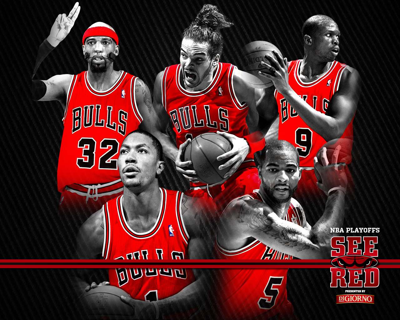 2012 playoffs see red wallpaper chicago bulls voltagebd Images