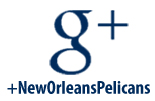 Pelicans Google Plus