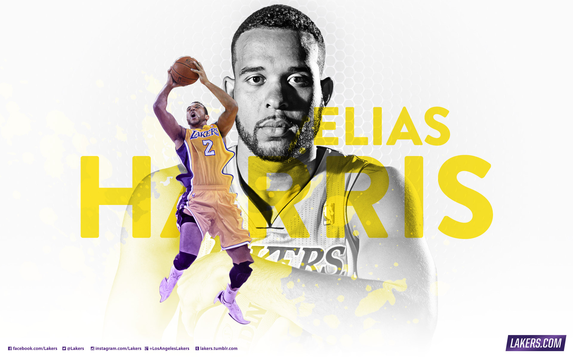 2013 14 season preview los angeles lakers player wallpaper elias harris voltagebd Image collections
