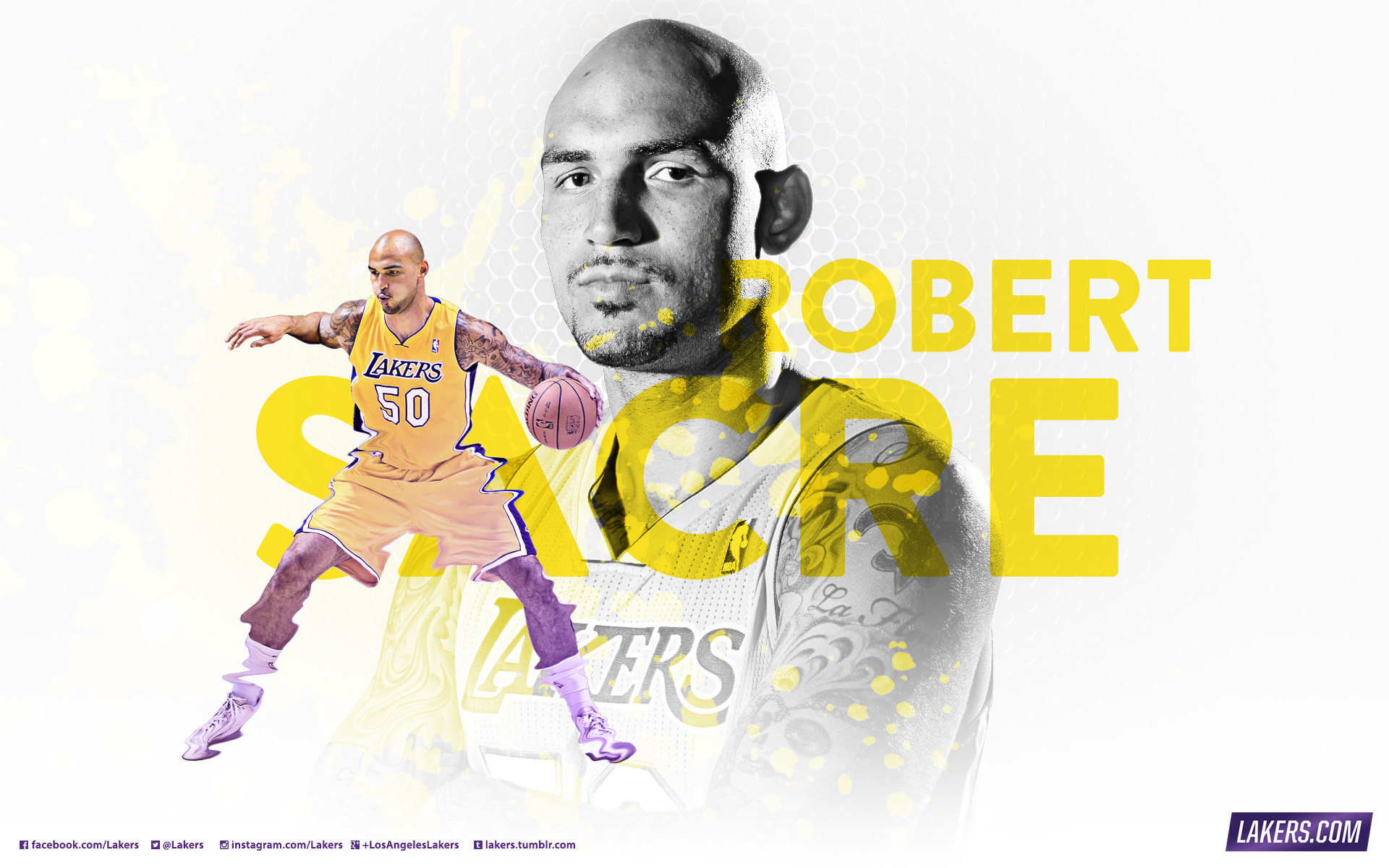 2013 14 lakers wallpapers los angeles lakers robert sacre wallpaper voltagebd Image collections