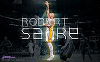 Player Wallpaper - Robert Sacre