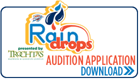 RainDrops Application