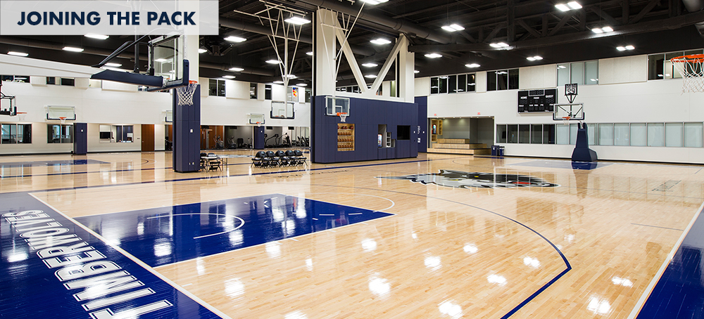Timberwolves and Lynx Career Opportunities