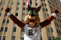 Coyote Raises The Spurs Banner - 1